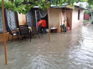 inundatii sannicolau mare (6)