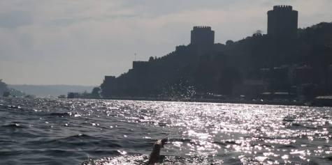 Avram Iancu Marea Neagra Istanbul 2