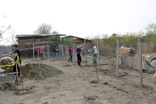 renovare-casa-Bucovat (11)