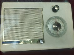 expo radio cj Arad (18)