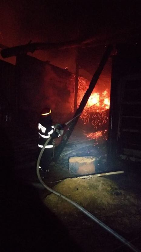 incendiu hala lemn (4)