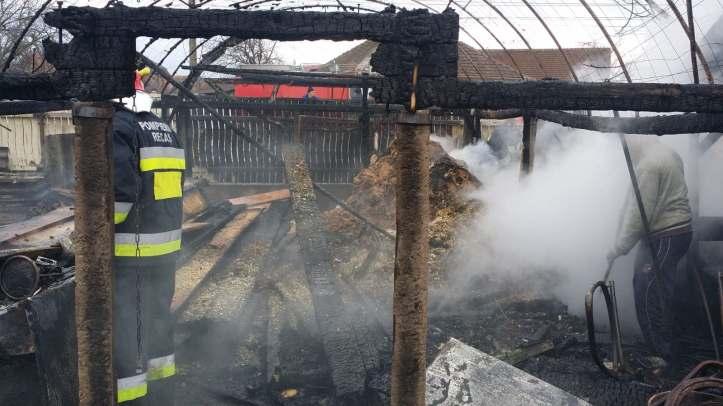incendiu hala lemn (8)