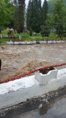 inundatii Timis mai 2019 (2)