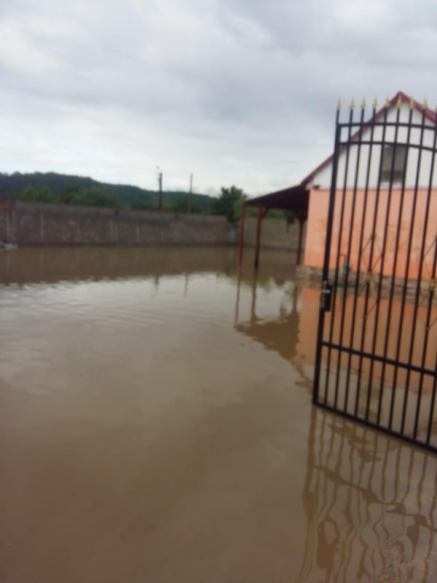inundatii Bocsa 1