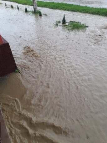 inundatii Timis 4 iunie 2019 (11)