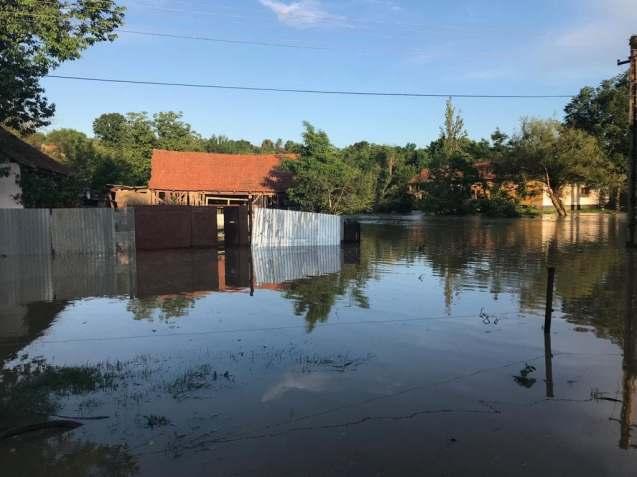 inundatii Timis (6)