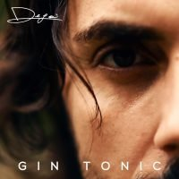 Gin Tonic Cover