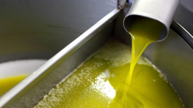 Olio d'oliva tunisino. La Via chiede tutela per gli imprenditori olivicoli siciliani.