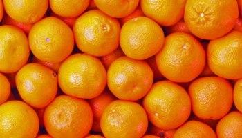 Bloccati  davanti all'agrumento con 100 chili di arance: tre arresti nelle campagne tra Carlentini e Lentini. Due catanesi e un lentinese