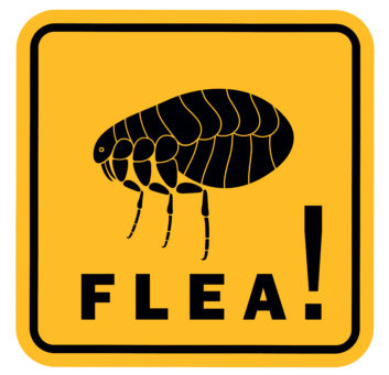 flea sign