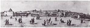 borrani1850