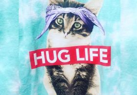 I wanted this shirt, but the only sizes they had left were XL & 2XL in men's! #huglife #kittens #walmart [instagram]