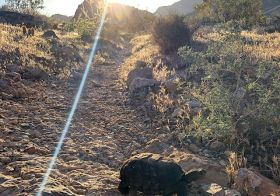 We had a special guest join us on our Monday night trail run…  It was my first ever tortoise sighting, too!  Then we went up Peak 3844 and enjoyed some lovely desert singletrack in only 97°F [instagram]