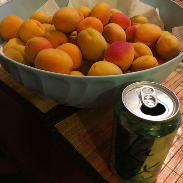 These count as organic apricots, right? i.e., from mum's backyard tree.  La Croix can for scale. If you're in town, LMK if you want any. #organicfruit #lasvegaslocals