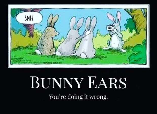 Happy Easter (if you celebrate it!) #easter2019 #eastersunday #easterbunny