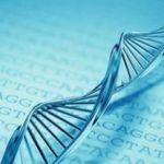 Генетические анализы: когда необходимо «расшифровать» ДНК?