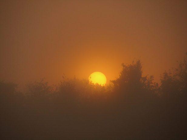 Sonnenaufgang im Nebel, Katzensee (ZH)