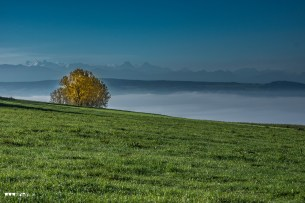 Ein Oktobertag auf dem Heitersberg