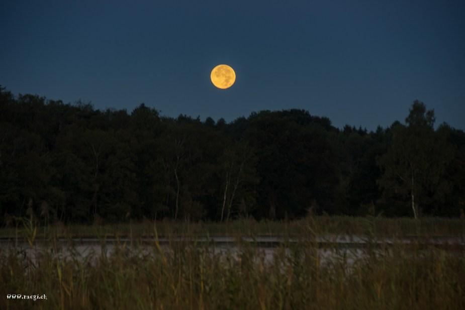 Mond über dem Katzensee