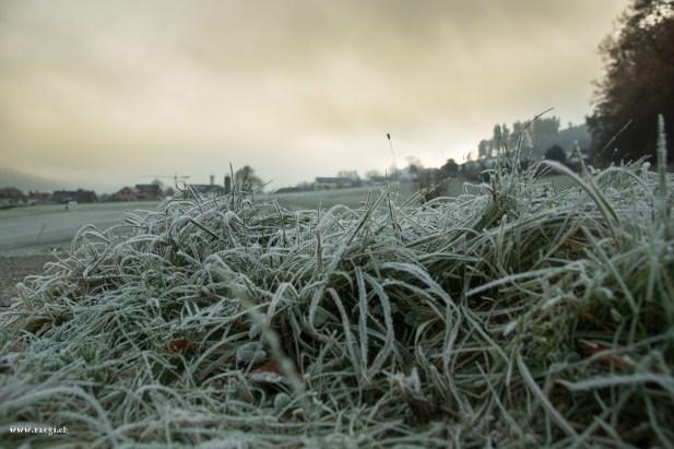 ein kalter Morgen in Killwangen