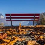 Herbstfarben am Walensee