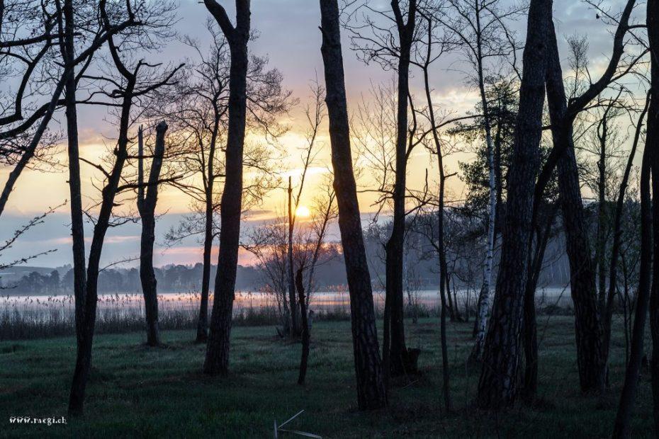 Sonnenaufgang Katzensee