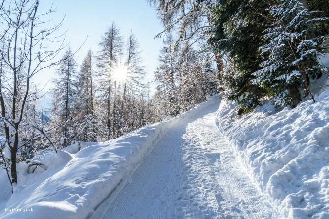 Ein Weg im Schnee