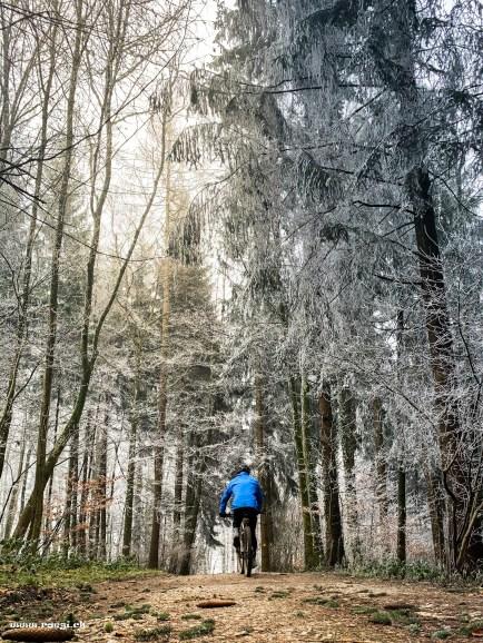 Mountainbiken im frostigen Wald