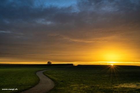 weg über das feld im Sonneaufgang