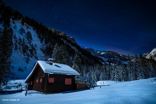 Verschneite Landschaft im Mondlicht