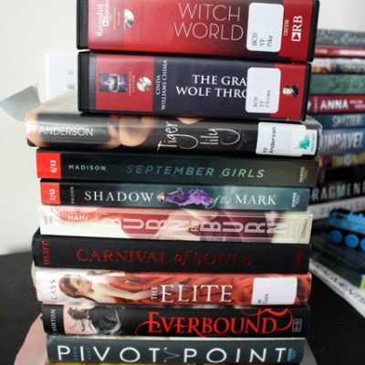 The Books I'm Going to Read This Summer