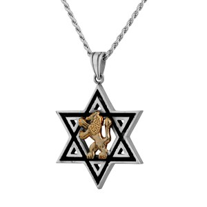 Sterling Silver Star of David Pendant Necklace with Gold Lion Of Judah