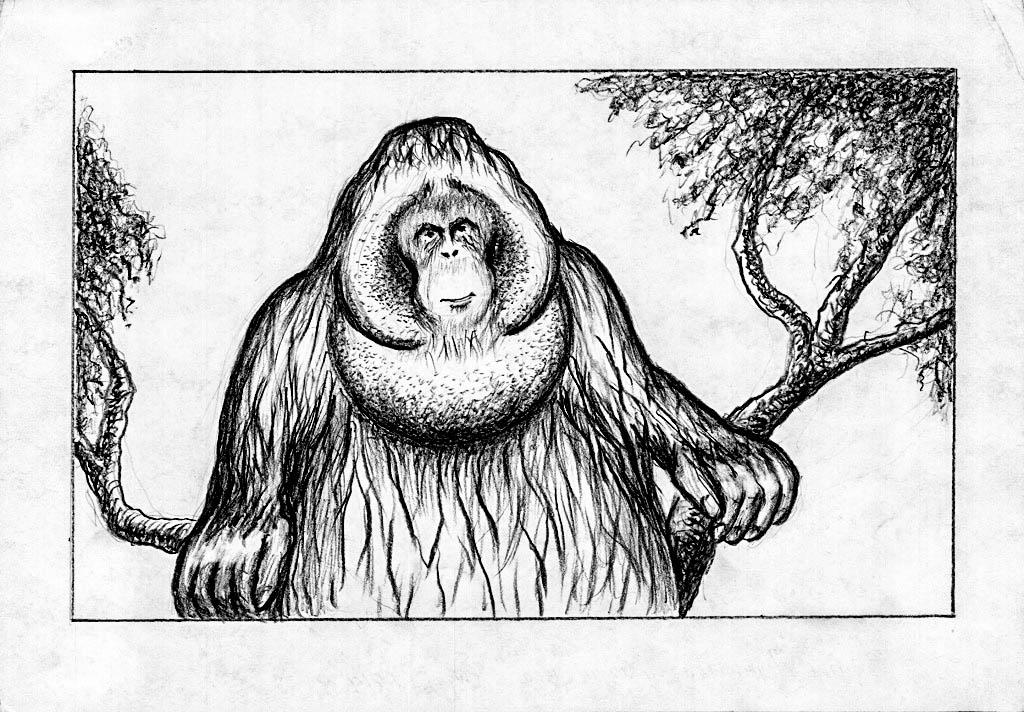 Graphics – Page 2
