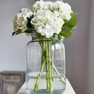 Sunbury White Hydrangea