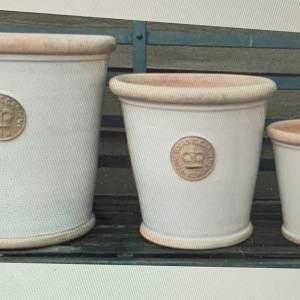 Kew Botanic Gardens L Bone Pot – 23cm X 20cm
