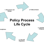 Policy Process Lifecycle