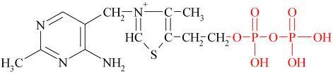 thiamine pyrophosphate