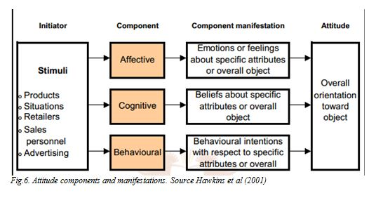 Attitude components and manifestations