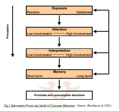 Information Processing Model of Consumer Behaviour