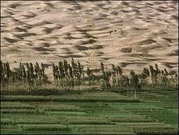 Creeping deserts