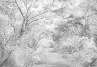 Blackhall Path by Adele Gregory