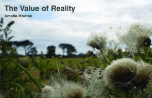 The Value of Reality by Amelia Modrak