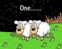 Counting sheep to get to sleep