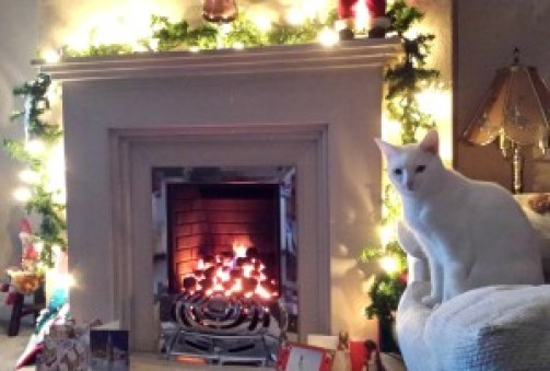 Be Warm and Cosy This Christmas