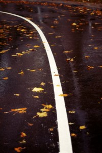 Leaves on Paved Road