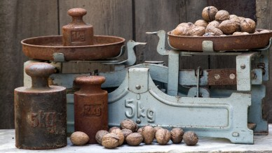 an old 5 kg scale with a pile of walnuts on one side and the other with a 1 kg weight only. The weight is heavier than the pile of walnuts. Illustrating the notion that a fixed viewpoint can outweigh the value of multiple viewpoints