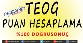 TEOG-PUAN-HESAPLAMA