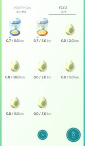 425643-can-i-optimize-egg-hatching-and-what-s-a-kilometer