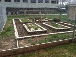 Garden designed entirely from raised beds in Bridgewater, NJ (Winter 2011, Middle Earth Offices)