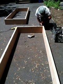 Raíces co-director Francisco G. Gómez constructing raised beds.